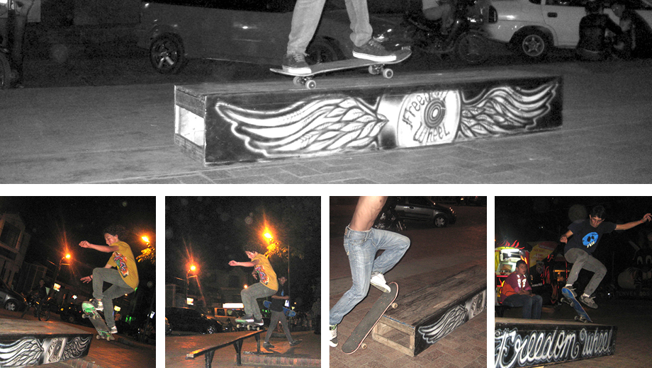 Exhibition and Skatepark Proyect in Acacias, Meta